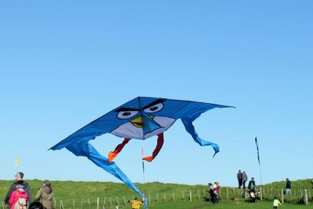 Angry bird kite landing